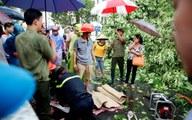 Sống ở Hà Nội, cần phải biết những nguy hiểm chết người này!