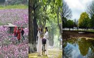 Những địa điểm chụp ảnh mùa thu tuyệt đẹp ở Hà Nội