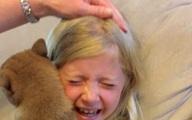 Video: Cô bé khóc nức nở khi nhận được một chú chó trong ngày sinh nhật