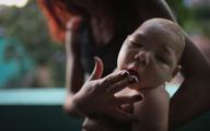 Bộ Y tế nâng cảnh báo phòng chống virus Zika lên cấp độ 2