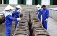 Vụ công bố thông tin nước mắm chứa Asen: Các chủ cơ sở nước mắm truyền thống nói gì?