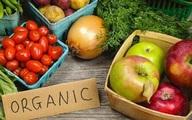 Mẹo giúp người tiêu dùng chọn mua rau hữu cơ an toàn
