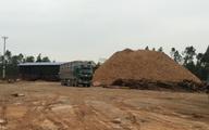 Thanh Hóa: Kiểm tra nhà máy gỗ dăm trái phép trong Khu kinh tế Nghi Sơn