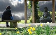"""Triết lý nhà Phật (5): Thấu triệt triết lý """"hai con dê qua một cây cầu"""" để cả đời không còn hận thù, phiền lụy"""