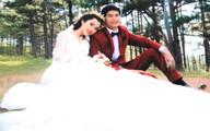 Ảnh cưới đẹp như mơ của tài xế dìu xe khách
