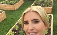 Vườn rau 'đủ loại' của ái nữ Donald Trump