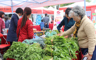Hà Nội: Du khách thích thú với phiên chợ Tết truyền thống