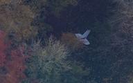 Bộ Quốc phòng xác nhận một đại úy phi công hy sinh ở Anh