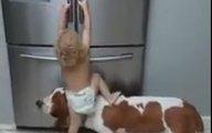 Chó 'cõng' bé trèo tủ lạnh dễ thương