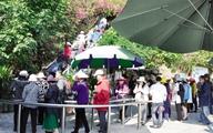 Tăng phí tham quan vịnh Hạ Long: Du khách ấm ức vì không đi vẫn mất tiền