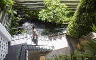 Khách sạn ở Đà Nẵng giống như khu vườn treo khiến ai đi qua cũng không thể rời mắt