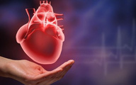 Cách phòng và xử lý bệnh tim mạch cho người cao tuổi