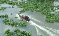 Cano Hải quan va chạm với xuồng chở thuốc lá lậu, một người rớt sông tử vong