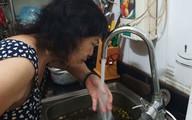 Vụ nước sạch ở Hà Nội nhiễm độc: Chuyên gia khẳng định mùi khét của nước không phải là Styren có trong dầu thải