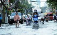 Xây đê bao kết hợp bãi đỗ xe, khu dịch vụ để chống ngập cho TP. Hồ Chí Minh