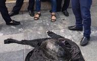 """Diễn biến ly kỳ sau """"vụ án"""" câu trộm rùa khủng ở Hồ Gươm"""