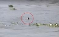 Nhảy cầu Sài Gòn tự tử, nam thanh niên đổi ý tự bơi vào bờ rồi chới với kêu cứu