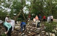 Hải Phòng: Hàng trăm tình nguyện viên ra quân dọn rác thải nhựa tại rừng phòng hộ ở Tiên Hưng, Tiên Lãng HP