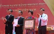 Cặp bánh trung thu kỷ lục Việt Nam nặng đến 3 tạ