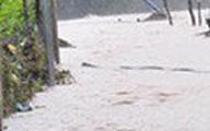 Lâm Đồng: Một người chết, hàng trăm ngôi nhà sập và ngập vì mưa lũ