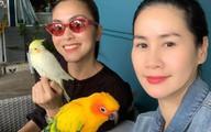 Đăng ảnh đi chơi cùng bạn thân, Tăng Thanh Hà khiến người hâm mộ lo lắng vì gầy gò đáng báo động