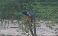Chàng trai cứu người trong lũ dữ rồi tự cứu mình khi kẹt ở ngọn cây