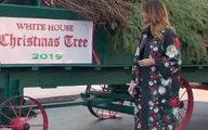 Melania đón cây thông Giáng sinh khổng lồ đến Nhà Trắng