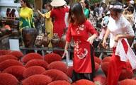 Khách tham quan giẫm đạp đồ trang trí tại đường hoa mai TP.HCM