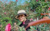 NSND Minh Hằng tận hưởng cảm giác bình yên bên vườn nhà ngập tràn hoa hồng
