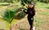Khu vườn rộng gần 10.000 m2 bạt ngàn cây trái của Trà Ngọc Hằng