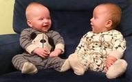 Những cặp song sinh 'yêu lạc lối' khiến bạn không thể nhịn cười