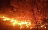 Nghệ An: Rừng thông cháy dữ dội lan sang nhiều xã
