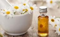 Những loại thảo dược giúp trị trĩ hiệu quả, bạn đã biết chưa?