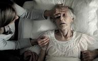 Sau khi chết, số máu còn lại trong cơ thể sẽ chảy đi đâu? Nghe lời giải đáp của chuyên gia, đảm bảo bạn sẽ kinh ngạc