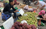 Đi 5km quả nho đắt gấp 4, từ chuồng ra chợ gà tăng giá 3 lần