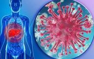 Virus nào gây viêm gan?
