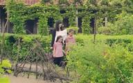 Gạo nếp gạo tẻ 2: Hải (Trung Dũng) hèn hạ bỏ trốn, để lại 4 đứa con cho người giúp việc, phim chính thức chuyển sang giai đoạn mới