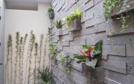 Đá tự nhiên ốp tường loại nào đẹp, chống nóng và chống bám rêu?