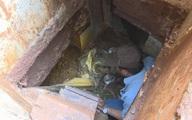 Gã đàn ông chuyên trộm cắp đào 2 căn hầm sau vườn nhà mình để lẩn trốn