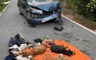 Trộm chó đi ôtô tông thẳng vào xe Cảnh sát để tẩu thoát