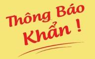 Khẩn cấp tìm người trên chuyến bay, nhà hàng và xe buýt tuyến 74 ở Hà Nội