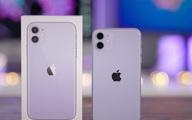 iPhone 11 xả kho, giảm giá 'sốc' 5 triệu đồng trong ngày đầu năm