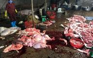 Kinh hãi cảnh bò bị bơm nước, giết thịt trên nền nhà dơ bẩn