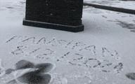 Hình ảnh mưa tuyết bất ngờ rơi phủ trắng đỉnh Fansipan ngày cuối năm