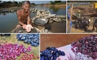 Ôm giấc mộng đổi đời, người dân đổ xô đào đá quý