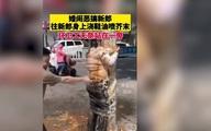 Chú rể bị trói vào cây, xịt nước rửa giày và mù tạt