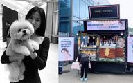 Song Hye Kyo mua tòa nhà 17,4 triệu USD