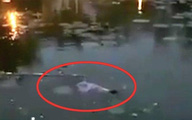 Hà Nội: Thi thể nữ sinh Học viện Nông nghiệp được phát hiện nổi giữa hồ nước trong trường