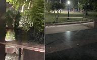 Bình Dương: Người phụ nữ Hàn Quốc nghi rơi từ tầng 9 chung cư xuống đất tử vong