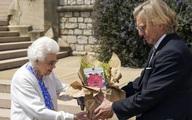 Nữ hoàng trồng hoa hồng nhân 100 năm ngày sinh của chồng